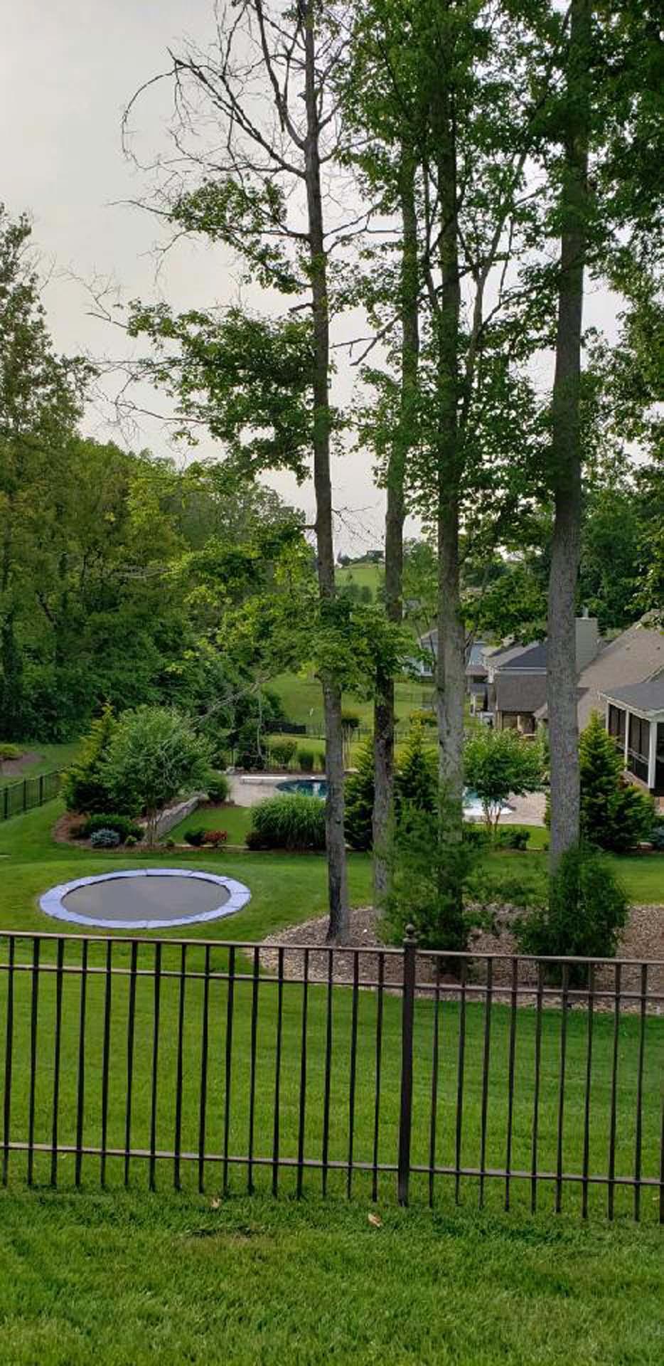Backyard Of A House